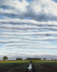 Acequia-2009-Oleo-y-acrilico-sobre-lienzo-215x170cm