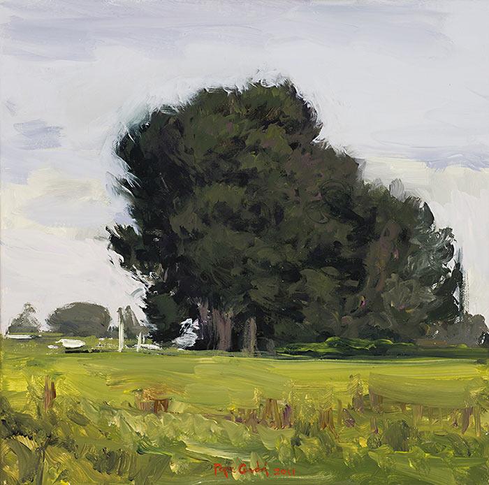 Arbol-Oleo-sobre-lienzo-40x40cm